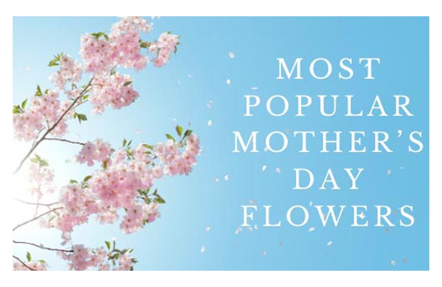 Most Popular Mother's Day Flowers